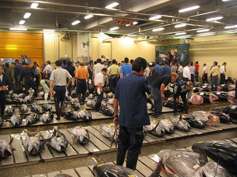 800px-Tsukiji_Fresh_Tuna_Auction