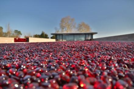 la-terrasse-rouge-128642.jpg