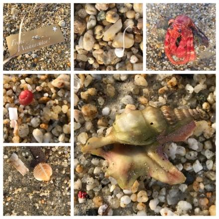 Sand treasures x 6