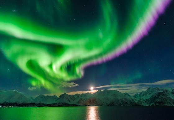 northern_lights_lyngenfjord_northern_norway_nav_d3ffe4a3-bde9-4ffa-8a1c-a42b84c60681