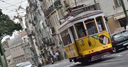 tram-4